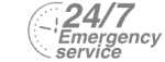 24/7 Emergency Service Pest Control in Acton, W3. Call Now! 020 8166 9746